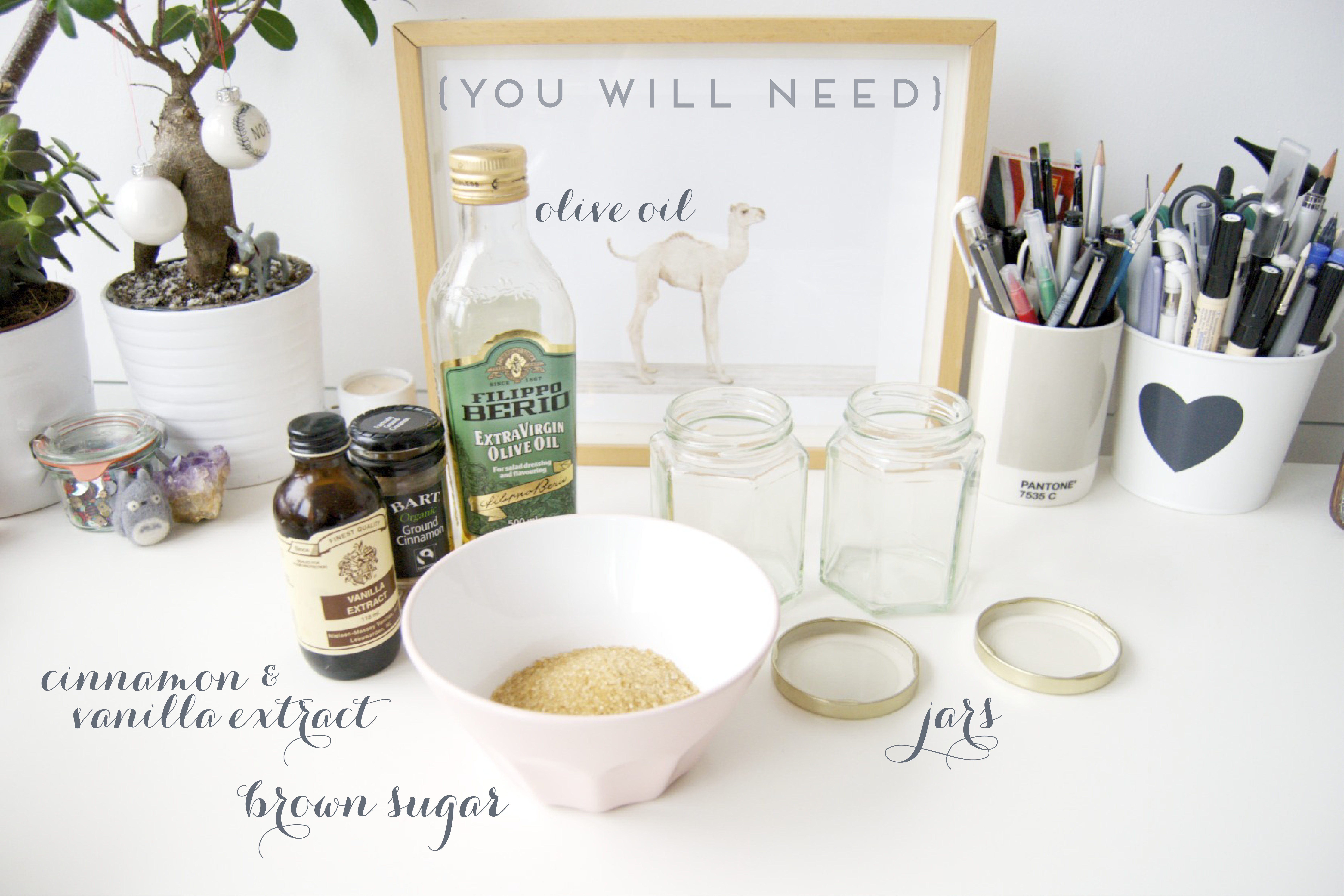 Guest Post{DIY} The Sweetest Scrub -