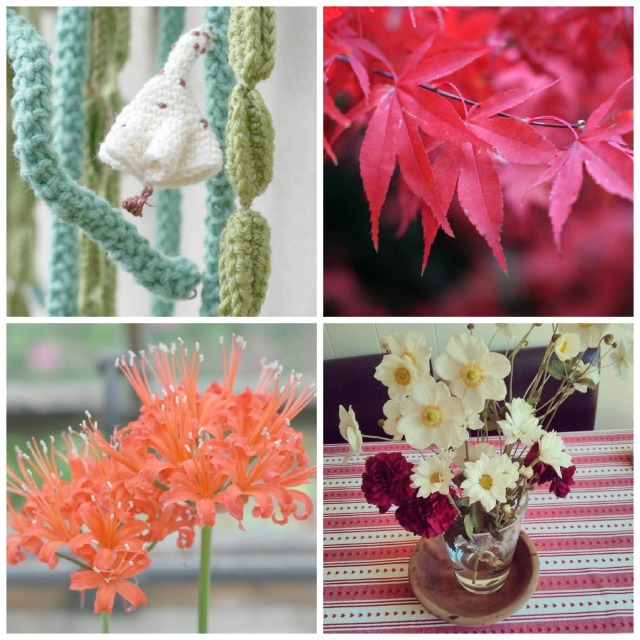 Claireabellemakes-Instalife-Flowers-Crochet-Plants